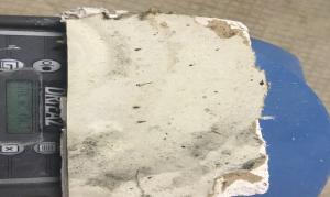 home mold testing